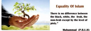 Equality-of-islamic-Sharia